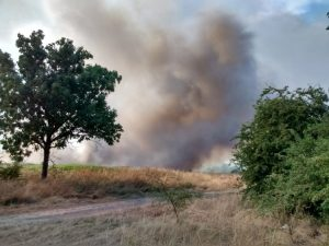 woolwich common fire - july 2018