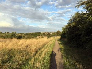 woolwich common - august 2019